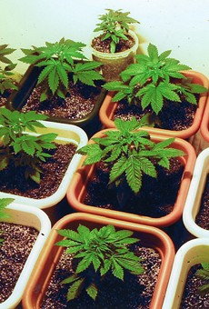 Florida lawmakers struggle to strike deal on medical marijuana