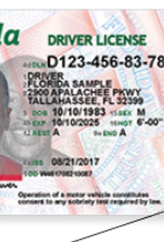 Florida's new driver's licenses should boost security