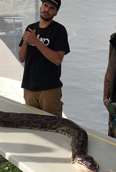 Florida snake hunter catches record-setting 17-foot Burmese python