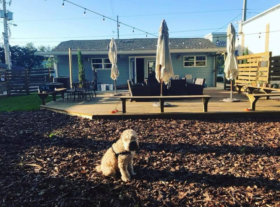 New Mills 50 wine and beer spot Grape & The Grain is finally open