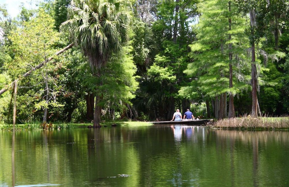 Dank Days In Orlando A Weedy Journey Through The City Beautiful Newcomers Guide Orlando Orlando Weekly