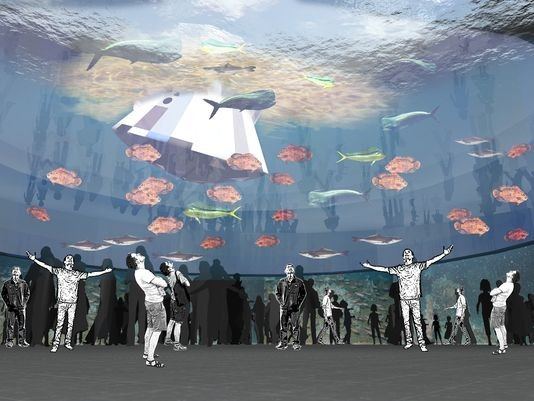 An image of the proposed Port Canaveral aquarium. This tank includes a model of the Orion space capsule floating in it. - IMAGE VIA THE COVE MERCHANTS ASSOCIATION