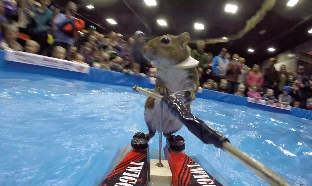 Twiggy water skiing at the 2019 KX Sport Show in Minot, North Dakota - SCREENSHOT VIA TWIGGY, INC./YOUTUBE