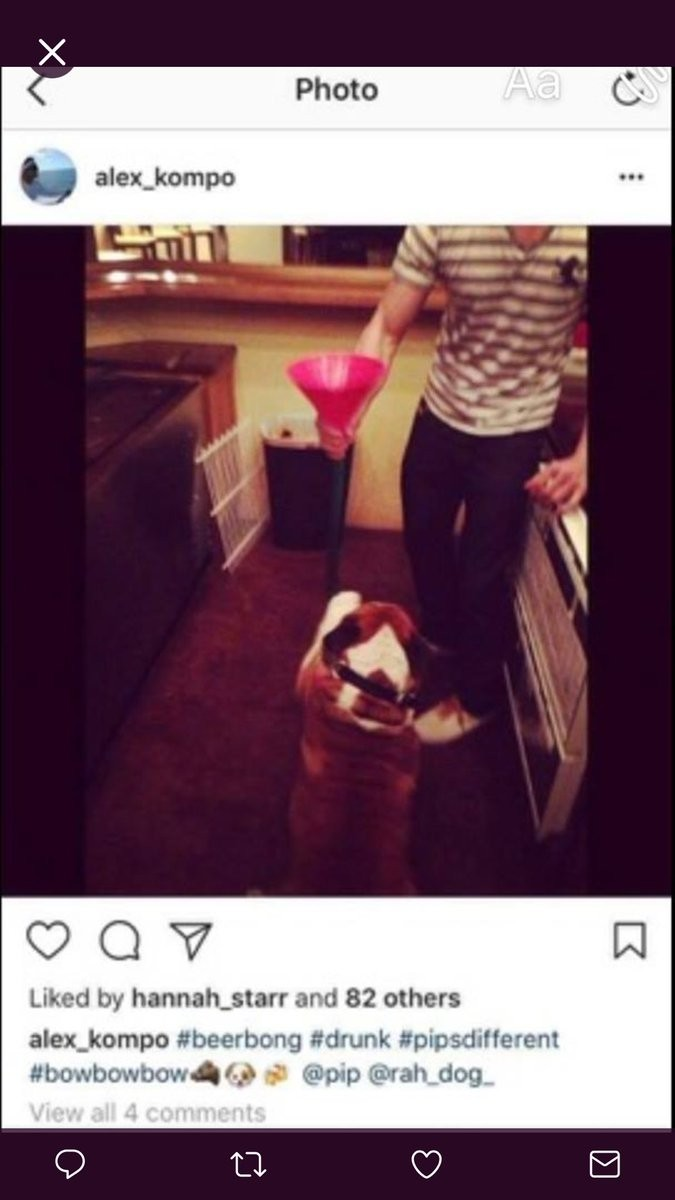 The deleted Instagram posts from the cast of MTV's 'Siesta