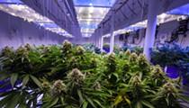House lawmakers target Florida's medical marijuana office