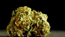 Florida's smokable medical marijuana ruling put on hold by appellate court