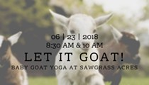 Let It Goat! Baby Goat Yoga at Sawgrass Acres
