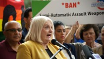 Linda Stewart calls for Florida to join lawsuit against 3D-printed gun blueprints