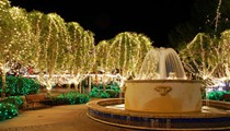 The best ways to see Christmas lights in Orlando this year