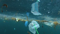 Florida lawmaker files bill that would ban cities from banning plastic straws