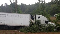 A semi-truck filled with sharks crashed on I-95 near Volusia County