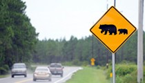 Circuit judge denies injunction to stop Florida's bear hunt