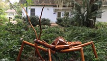 Exploring the Big Bug Invasion at Harry P. Leu Gardens