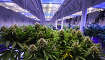 Smoking medical marijuana is now legal in Florida
