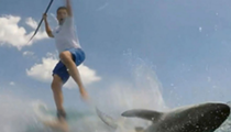 Watch this shark plow into a Florida paddle boarder
