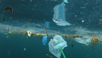 New Florida bill seeks to ban single-use plastic straws and carryout bags statewide