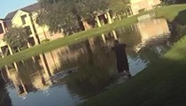 Orange County deputy's body-cam footage shows dramatic rescue of woman from pond