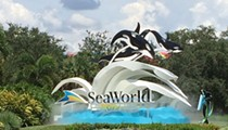 Hoping to stop its leadership bleed, SeaWorld chooses fifth CEO since last year