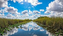 Florida is buying 20,000 acres of Everglades to protect it from oil drilling