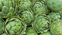 Artichokes may grow in Florida after all, discovers UF scientist