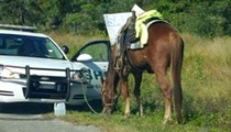 You can get a DUI on a horse in Florida
