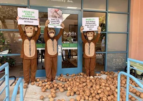 PETA activists drop hundreds of coconuts at Lake Eola Publix Thursday in protest against 'forced monkey labor'