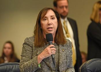 Democrat Lori Berman cruises to win in Florida Senate election