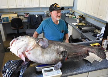 Florida man gets screwed out of record books after catching monster catfish