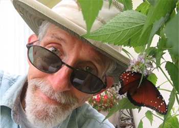 Central Florida's love for monarch butterflies is in full bloom – but are we loving them to death?