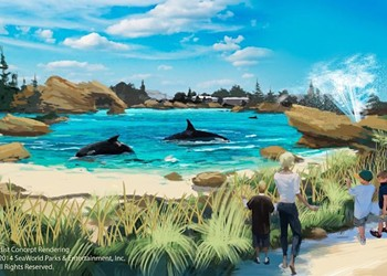 SeaWorld Orlando is ending its theatrical orca shows, but they still have a long road ahead