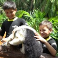 Discovery Cove offers new Animal Trek behind-the-scenes tour