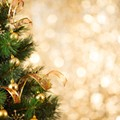 Orlando Museum of Art kicks off the holidays with the annual Festival of Trees