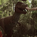 Matt Pond goes to Dinosaur World and picks up Florida hitchhikers in new music video