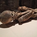 Mummies looks more like a permanent exhibit than a temporary set-up and the real buzz around Artegon is Gods & Monsters