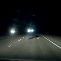 This is what happens when you hit an alligator while driving 70 mph