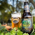 Pumpkin chunkin': A selection of seasonal craft beers that aren't pumpkin