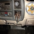 Florida man cited after authorities found an illegally poached gator foot stuck in his dashboard