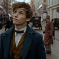 'Fantastic Beasts and Where to Find Them,' aka the American Harry Potter, lacks magic