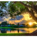 Palm Beach Gardens, Venice and Ponte Vedra Beach top a list of 'The best cities to live in Florida'