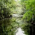 Former Rick Scott aide named Florida's environmental chief