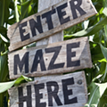 14 Central Florida pumpkin patches, corn mazes, hayrides and more