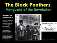 7de8a42b_the_black_panthers.jpg