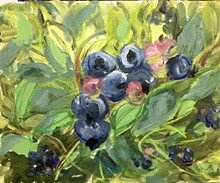 70f1ab3d_coup_blueberries-1.jpg
