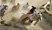 Sanford-Orlando Kennel Club is the Third Deadliest Dog Track in Florida