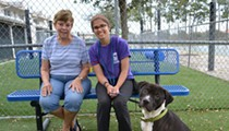 Thanks to social media, Orlando shelter dog finds a home in less than two hours