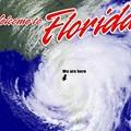 5 hurricane survival tips to get you through Florida's windy season