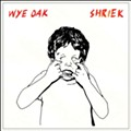 Wye Oak's 'Shriek' lacks the band's trademark soulful tension