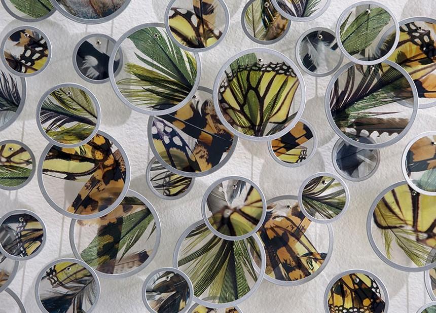 Alan Bur Johnson, a flock, a swarm (detail), 2020, photographic transparencies, metal frames, dissection pins, 93.5 x 39 x 2 inches. - LISA SETTE GALLERY