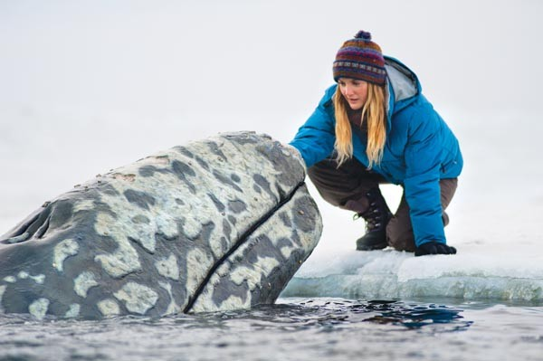 Captive audience: Drew Barrymore talks with a whale.