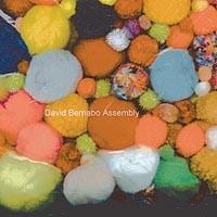 David Bernabo unites diverse elements on <i>Assembly</i>
